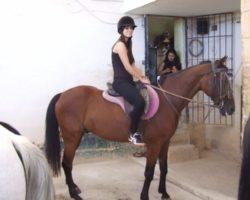 Horse Riding (Mayo 2013) Malta (69)