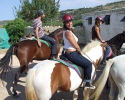 Horse Riding (Mayo 2013) Malta (72)