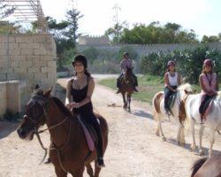 Horse Riding (Mayo 2013) Malta (75)