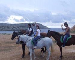 Horse Riding (Mayo 2013) Malta (78)