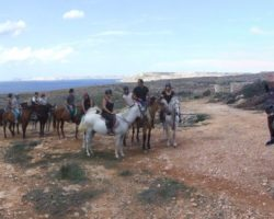 Horse Riding (Mayo 2013) Malta (8)