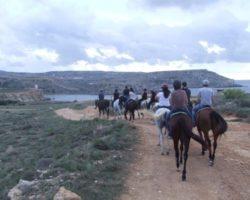 Horse Riding (Mayo 2013) Malta (9)