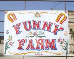 The funny farm (Abril 2013) (48)