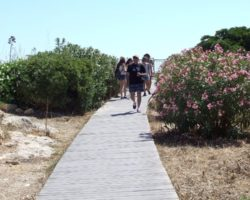 Viaje a Gozo y Comino (Junio 2013) (25)