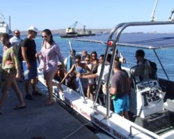 Viaje a Gozo y Comino (Junio 2013) (78)