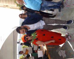 10 ABRIL STRAWBERRY FESTIVAL 2016 MALTA (33)