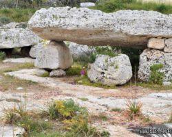10 Abril Wied il-Ghasel Mosta Malta (4)