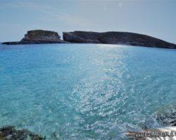 10 Mayo Gozo Comino Malta (108)