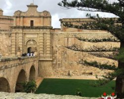 14 OCtubre San Anton Gardens, Mdina, acantilados de Dingli Malta (12)