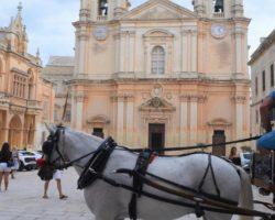 14 OCtubre San Anton Gardens, Mdina, acantilados de Dingli Malta (15)