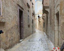 14 OCtubre San Anton Gardens, Mdina, acantilados de Dingli Malta (19)