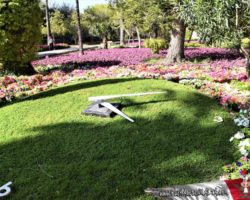 14 OCtubre San Anton Gardens, Mdina, acantilados de Dingli Malta (2)