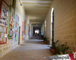 14 OCtubre San Anton Gardens, Mdina, acantilados de Dingli Malta (6)
