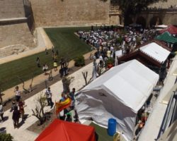 15 MAYO MDINA INTERNATIONAL FOOD FESTIVAL 2016 MALTA (3)