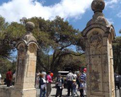 15 MAYO VISITA AL VERDALA PALACE MALTA (2)