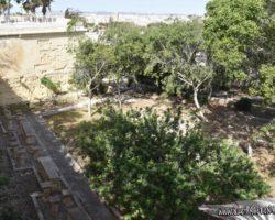 15 Mayo Gardens Tour Malta (16)