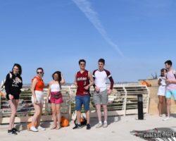 15 Mayo Gardens Tour Malta (17)