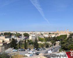 15 Mayo Gardens Tour Malta (20)
