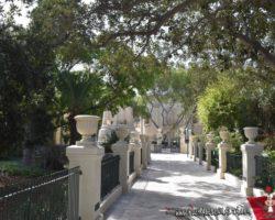 15 Mayo Gardens Tour Malta (23)