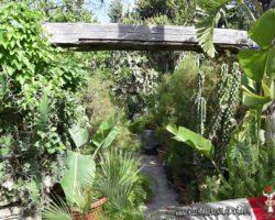 15 Mayo Gardens Tour Malta (27)
