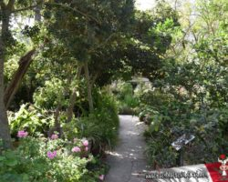 15 Mayo Gardens Tour Malta (29)