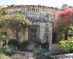 15 Mayo Gardens Tour Malta (36)