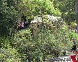 15 Mayo Gardens Tour Malta (38)