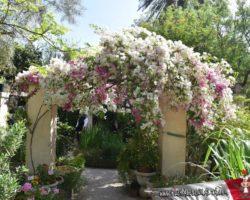 15 Mayo Gardens Tour Malta (43)
