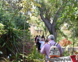 15 Mayo Gardens Tour Malta (46)