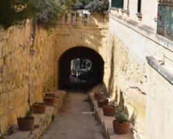 15 Mayo Gardens Tour Malta (48)