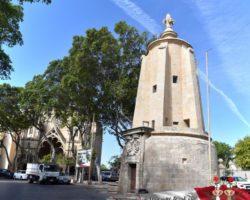 15 Mayo Gardens Tour Malta (51)
