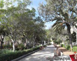 15 Mayo Gardens Tour Malta (7)