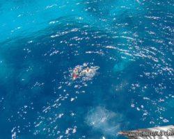 16 Junio Crucero por Comino Malta (28)