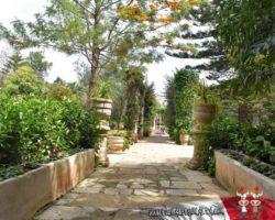 16 Mayo Gardens Tour Malta (17)