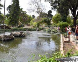 16 Mayo Gardens Tour Malta (24)
