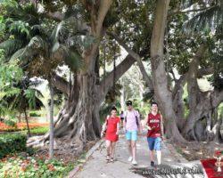 16 Mayo Gardens Tour Malta (29)