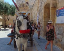 23 Junio Game of Girls Malta (34)