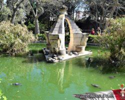 24 Abril Caballeros de Malta (11)