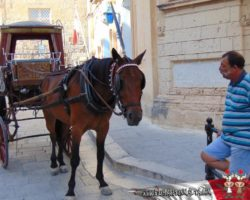 29 Junio Especial Mosta, Mdina y Dingli Malta (27)