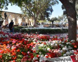 31 Mayo Valletta tour Malta (12)
