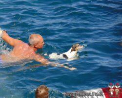 4 Julio Escapada por el Sur Malta (88)