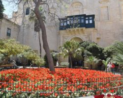 4 Mayo Capitales de Malta (15)