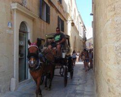 5 Junio Capitales de Malta (50)