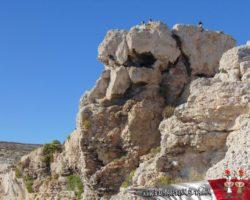 6 Septiembre Capitales de Malta (38)