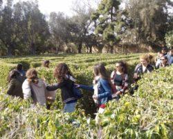 8 ABRIL ESCAPADA DE CINE MALTA (30)