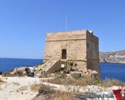 8 Mayo Gozo Malta (27)