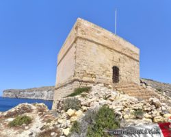 8 Mayo Gozo Malta (30)