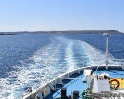 8 Mayo Gozo Malta (4)