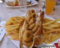 8 Mayo Gozo Malta (51)
