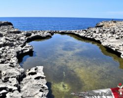 8 Mayo Gozo Malta (57)